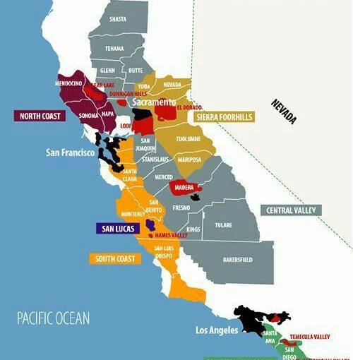 Rượu vang California - Đại diện của Tân thế giới