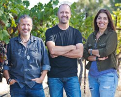 Rượu vang CA'MOMI Cabernet Sauvignon Reserve