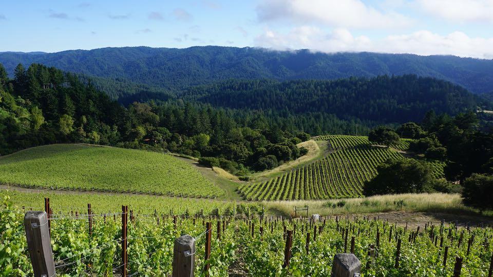 Khám phá vùng rượu vang California